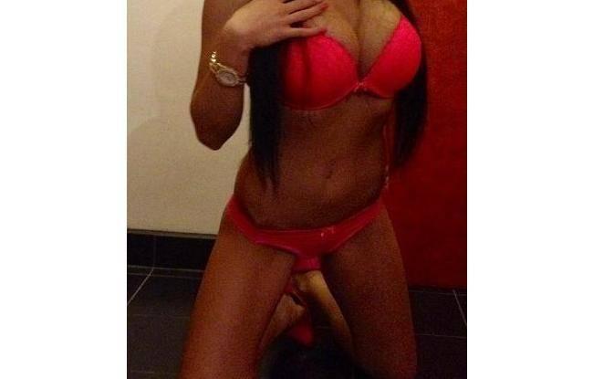 Sexy šelmičky