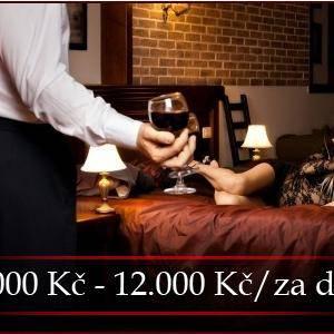 7000 KČ - 12 000 KČ DENNĚ